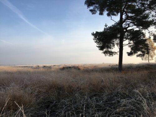 Fietsen en wandelen in de Drentse natuur
