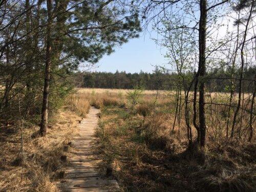 Vrijheid in Drenthe, het Drents Friese Wold