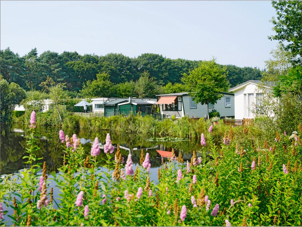 Jaarplaats Camping Zonnekamp